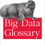 Les enseignements du Glossaire Big Data de O'Reilly