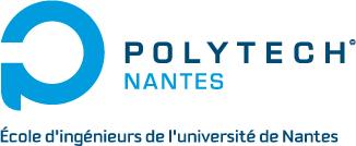 Les formations Big Data à Polytech Nantes