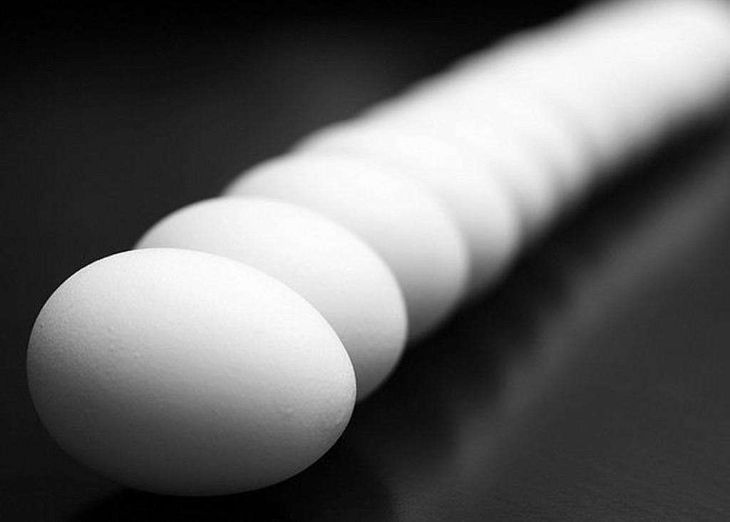 Open data... l'œuf ou la poule?
