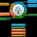 Les 3 enjeux clés de la transformation digitale du pilotage commercial