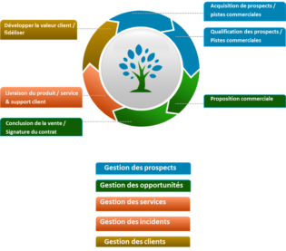 Enjeux de la Transformation Digitale du pilotage commercial: Conduite du changement: Processus de vente