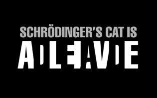 chat-schrodinger