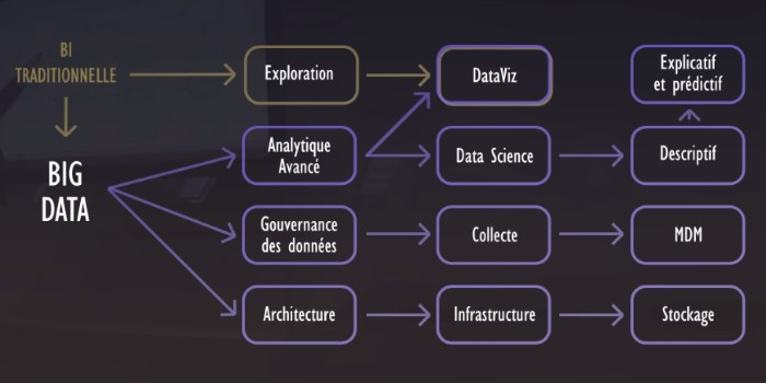 Data Science et Business Intelligence
