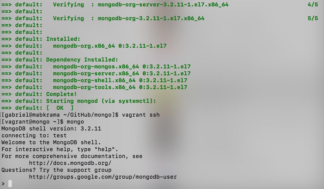 Démarrage MongoDB