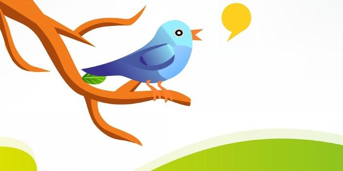 Comment utiliser Twitter pour optimiser les conversions vers un site e-commerce?